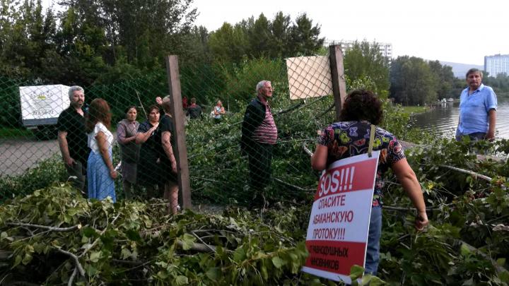 В Красноярске уничтожают зелёную зону на правом берегу