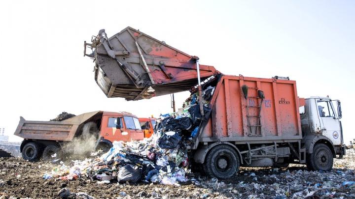 Выкинули в мусорный бак: в Ярославле на свалке нашли тело убитой женщины. Видео