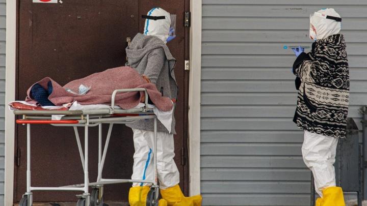 Пандемия коронавируса сделает нас сильнее. Или превратит в саранчу