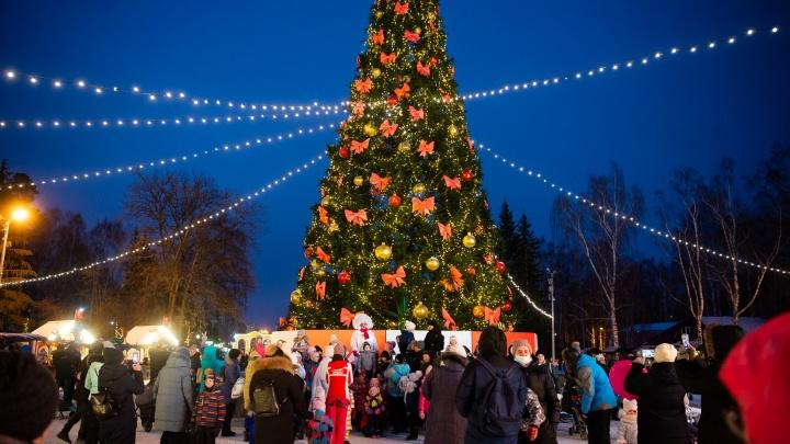 В парке Маяковского открыли новогоднюю ярмарку и зажгли елку