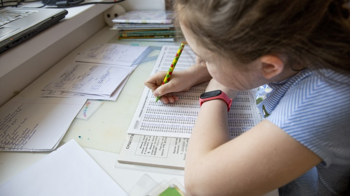 Министр образования Челябинской области высказался о досрочном завершении учебного года