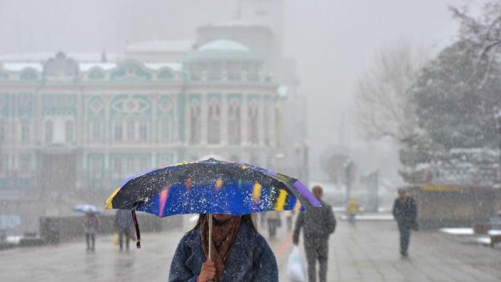До конца недели в Екатеринбурге сохранится ветреная погода с мокрым снегом
