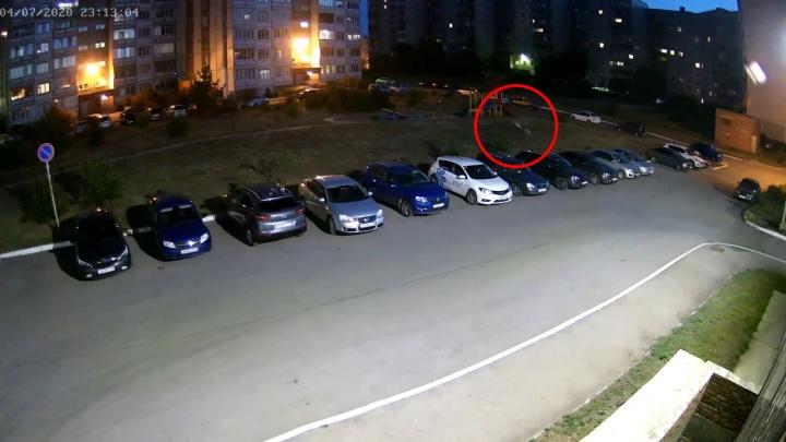 Следователи проверят информацию из скандального ролика о нападении стаи собак на детей в Тольятти