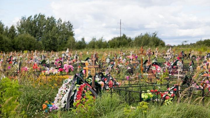 Назвали причины, из-за которых чаще всего умирают в Ярославской области. Инфографика