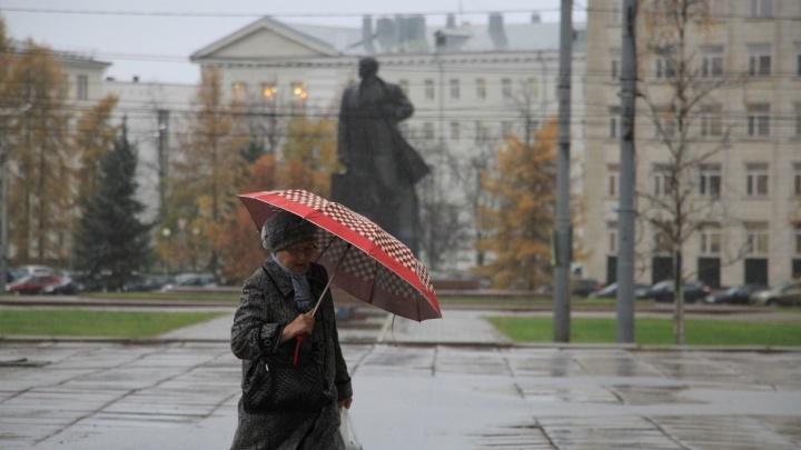 МЧС предупреждает: ночью и утром в Архангельске ожидаются сильный дождь и гроза