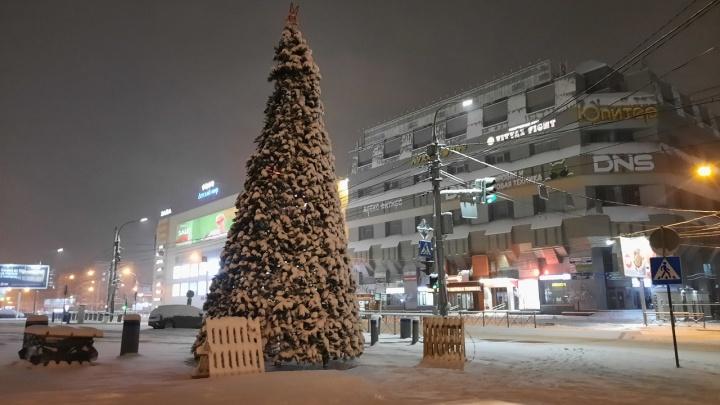 В Новосибирске возле Центрального рынка поставили первую новогоднюю елку