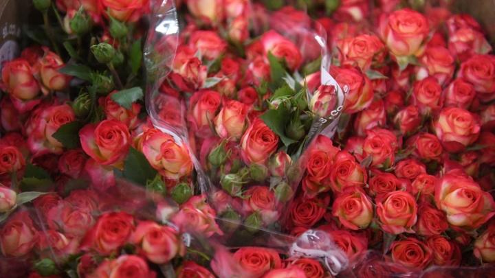 Скоро во всех киосках: рассматриваем цветы, которые будут вручать екатеринбурженкам