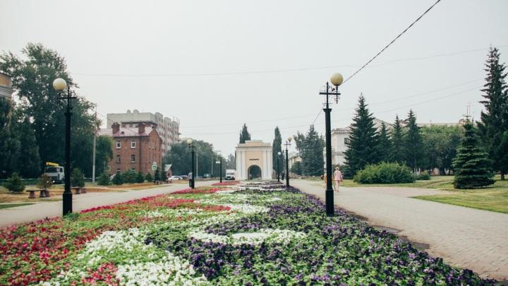 Мэрия для украшения города закупит более 98 тысяч цветов