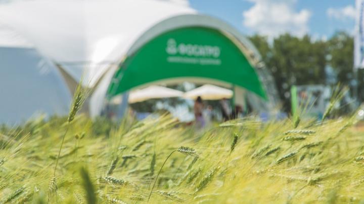 На 35% выросло потребление жидких комплексных удобрений в Ростовской области