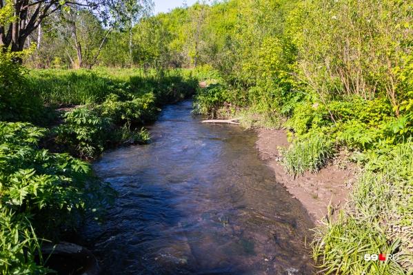 Речка Егошиха протекает через историческую часть Перми