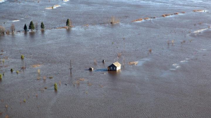 В краю лошадей-трудяг и лодок из ступеней ракет: смотрим на затопленные мезенские деревни с высоты