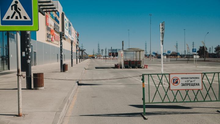 С 1 июня в Тюменской области снимут ряд карантинных ограничений. Кто сможет работать?