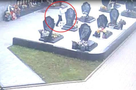 У памятников на Леонтьевском кладбище женщина провела всю ночь