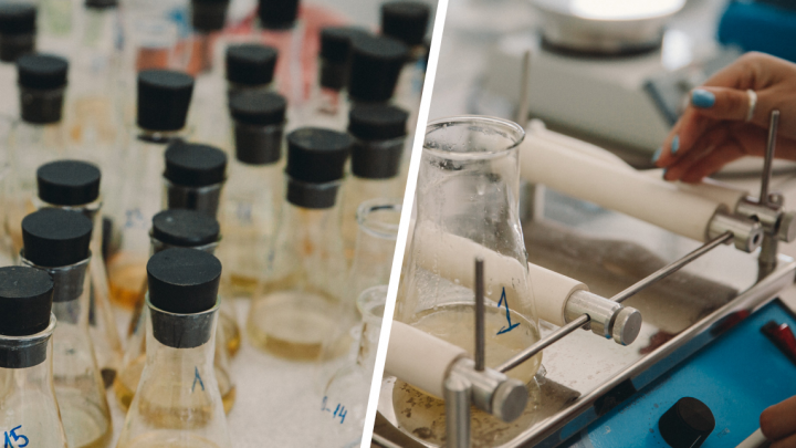 Независимая лаборатория проверила качество воды, на запах которой жаловались тюменцы (вы удивитесь)