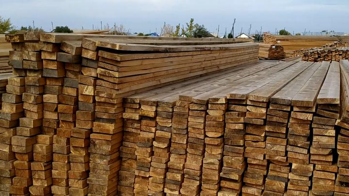 На новосибирской таможне поймали контрабандистов дерева — им грозит до 7 лет тюрьмы