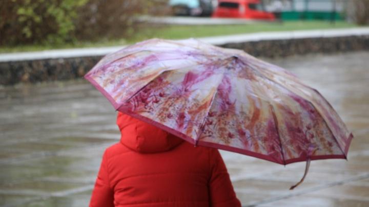 Днем 26 июня в Архангельской области ожидаются небольшие дожди и грозы