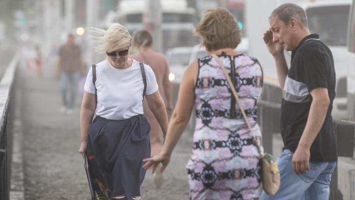 Небольшие дожди и порывистый ветер: какая погода ждёт Волгоградскую область в ближайшие дни