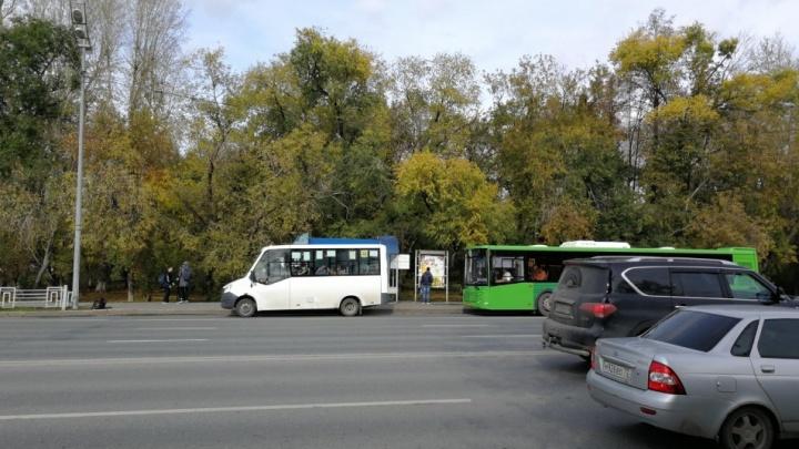 Поставят урны, собачью станцию и велопарковку: в Тюмени отремонтируют сквер Железнодорожников