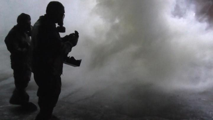 Силовики потренировались освобождать автобус с пассажирами от террористов