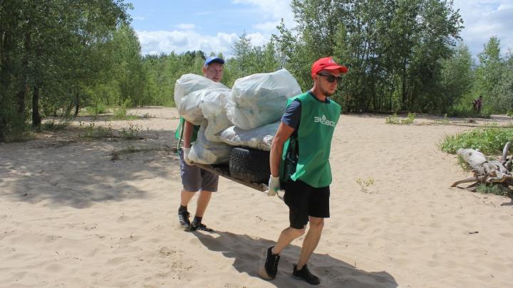От слов к делу: экоактивисты вывезли тонны мусора с пляжа на Муравьиных островах