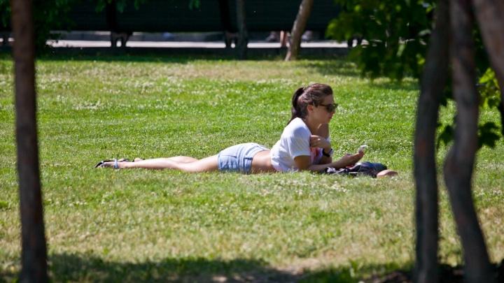 Уйдёт ли невыносимая жара: какая погода ждёт новосибирцев на следующей неделе