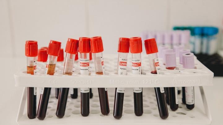 Не все соглашаются: часть опрошенных тюменцев, переболевших COVID-19, отказалась от донорства плазмы