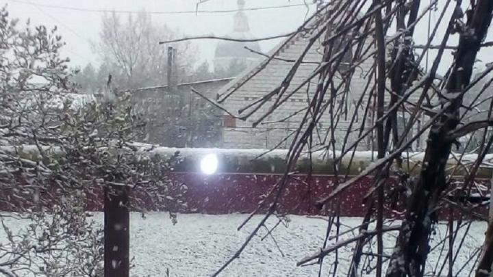 Волгоградскую область засыпает апрельским снегом