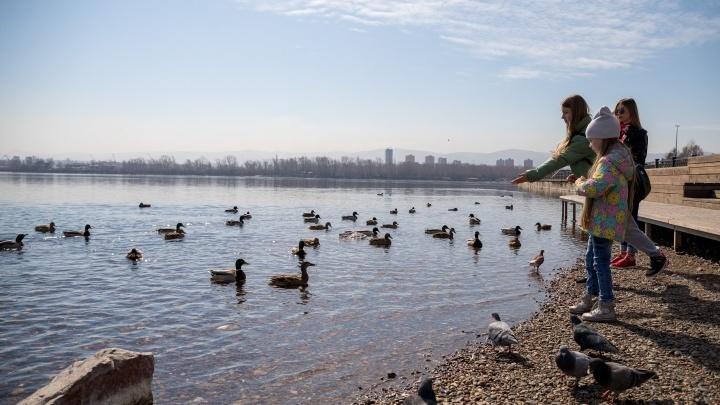 В Красноярск вернется теплая и безветренная погода