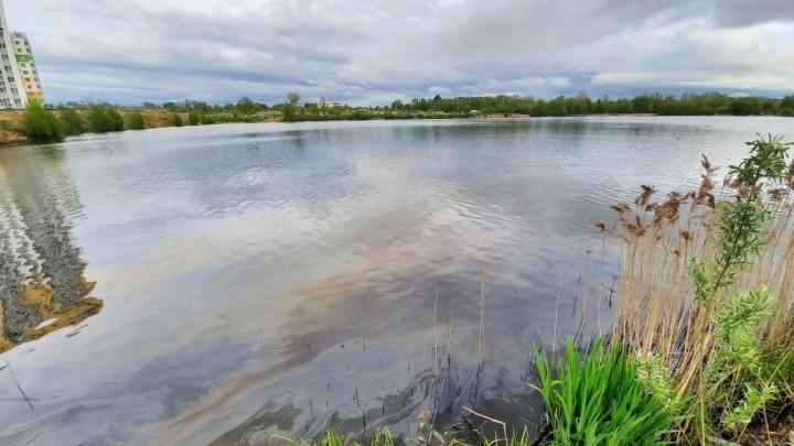 Видео дня. Озеро в микрорайоне Бурнаковский покрылось радужной пленкой