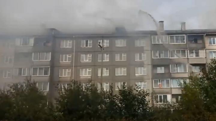 Проезжающий мимо водитель спас из горящего дома людей и кошек