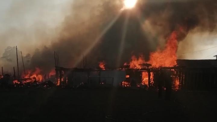 «Ветер переменится — сгорит вся улица»: под Сысертью загорелись заброшенные постройки рядом с домами