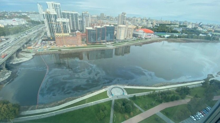 На Городском пруду заметили нефтяную «радугу»