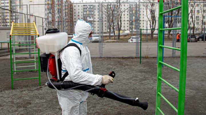 В Челябинске из-за коронавируса возобновят обработку дворов и подъездов