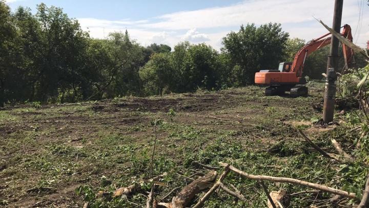 Утром сажаем, вечером выкапываем: с Щербанёва исчезли недавно посаженные деревья