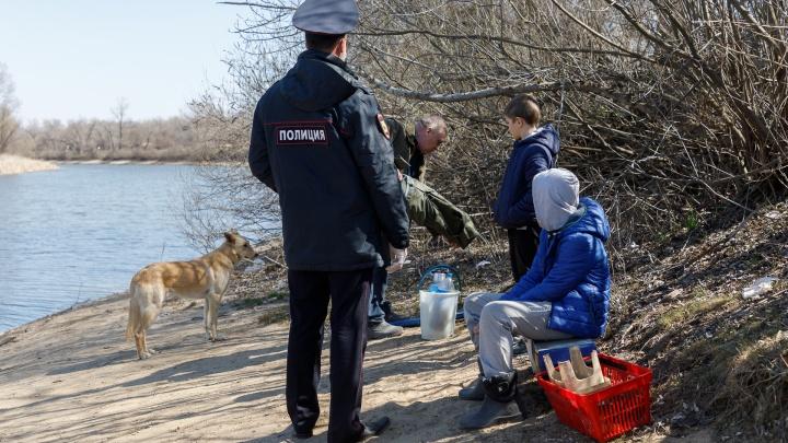 Вышли без уведомления и паспорта: в Волгограде активно штрафуют нарушителей режима самоизоляции