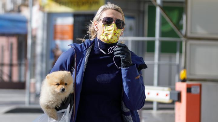 Всего 432 заражённых: в Волгограде подтвердился коронавирус у 46 человек, 10 умерли