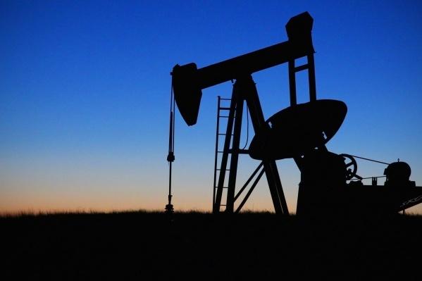 Работа в нефтегазовой отрасли требует особых знаний и опыта, квалификации и наличия специальных разрешений на месторождении. Найти подобные организации на обычных сайтах сложно