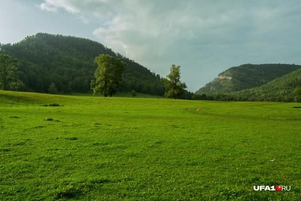 Чистота горной местности восторгает