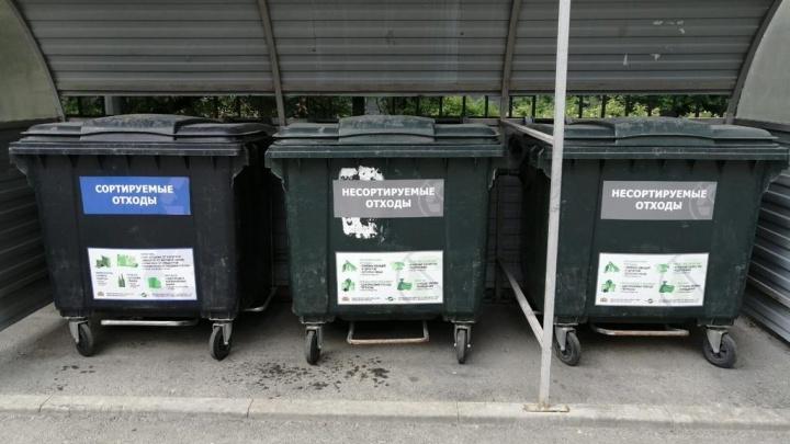 В Екатеринбурге планируют увеличить число дворов, где собирают мусор раздельно