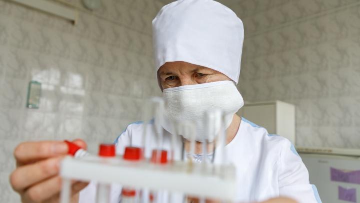 В Прикамье еще 30 человек выздоровели от коронавирусной инфекции