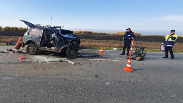 Водитель «Нивы» пытался уйти от столкновения на трассе под Заводоуковском и погиб