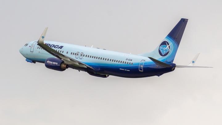 В авиакомпании рассказали подробности рейса Новокузнецк — Кемерово — Анапа — Крым