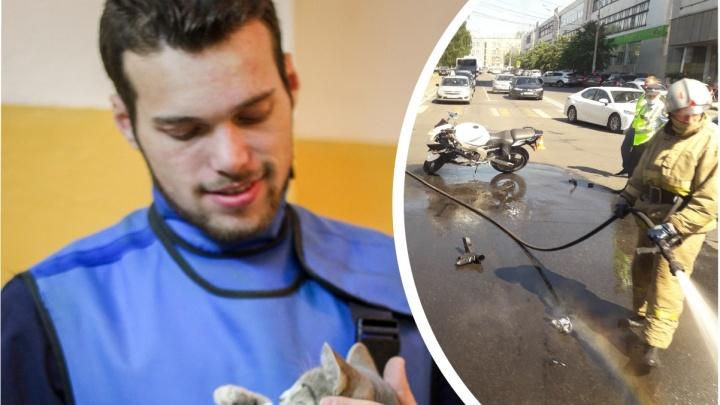 «Полностью обездвижен»: молодой ветеринар попал в реанимацию после ДТП в центре Ярославля
