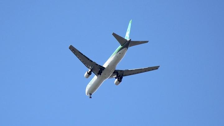 Самолет с пермяками вернулся в московский аэропорт из-за технических проблем