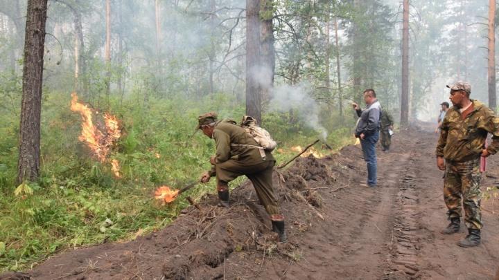 Пожар в национальном заповеднике Башкирии тушат 352 человека и 103 машины