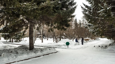 Названы новосибирские парки, которые благоустроят в этом году. Публикуем список и показываем фото