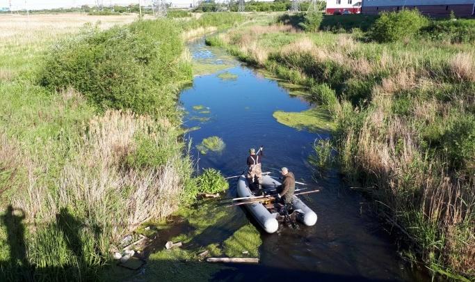В Кургане прокуратура сообщила о сбросе нечистот в реку Чёрную