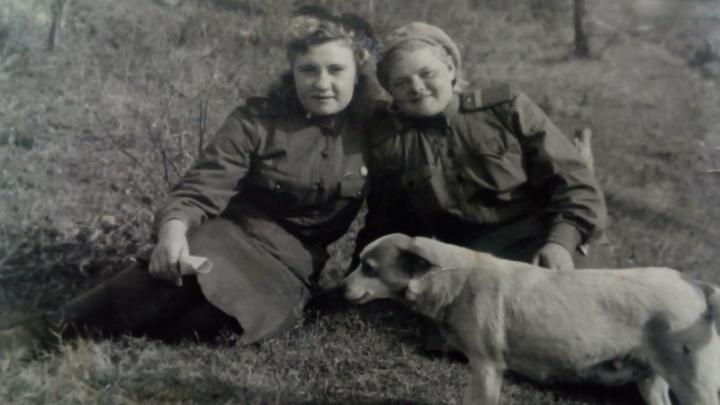 Ловила рыбу зубами и чувствовала мины: история необычной собаки, которая в войну спасла разведчиц