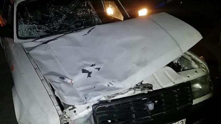 В Кузбассе пьяный водитель насмерть сбил двух пешеходов
