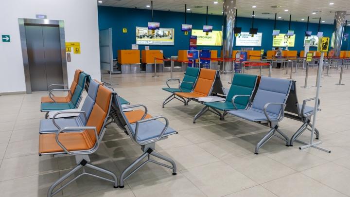 До Северной Пальмиры — поездом: авиакомпания «Победа» продлила отмену рейсов в Санкт-Петербург